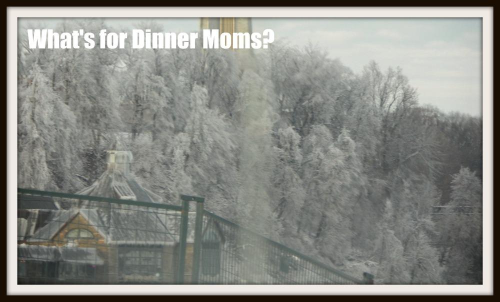 Misty Trees, Niagara Falls, CN