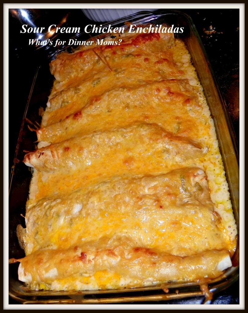 Sour Cream Chicken Enchiladas - What's for Dinner Moms
