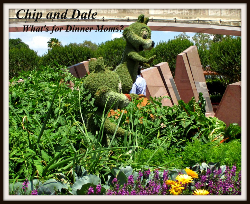 Chip and Dale - Epcot Flower and Garden Festival