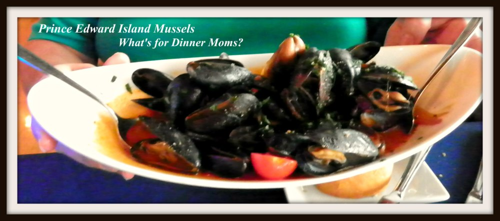Narcoossee - Prince Edward Island Mussels