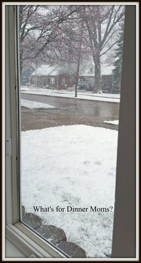 winter scene in April