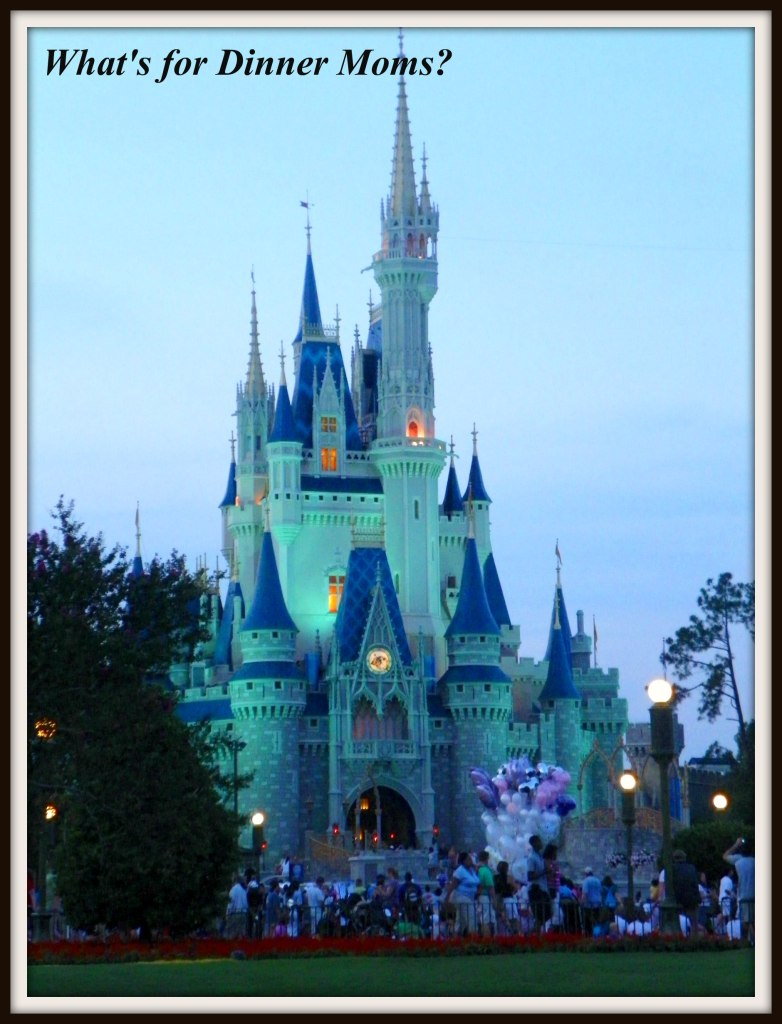 Disney Castle at Dusk
