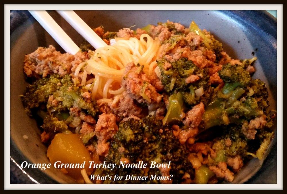 Orange Ground Turkey Noodle Bowl