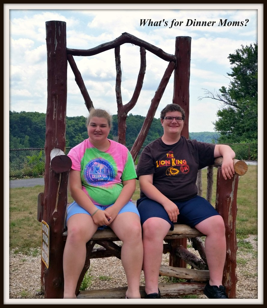 Letchworth Park - Giant Chair