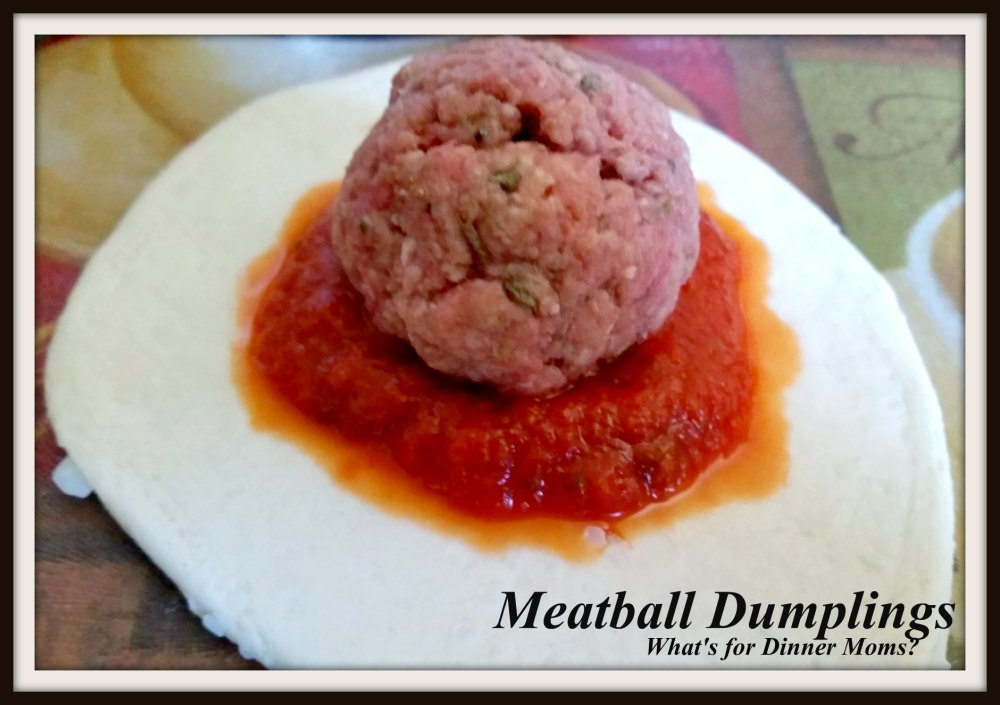 Meatball Dumplings (1)