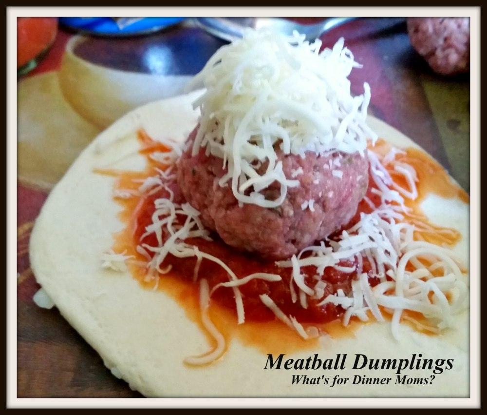 Meatball Dumplings (2)