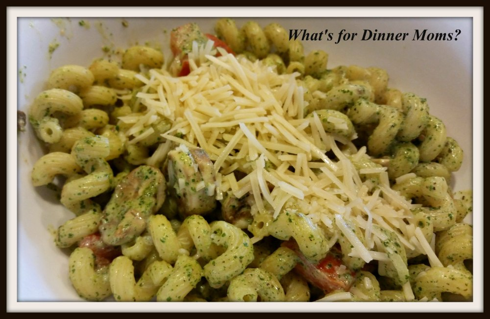 noodle-co-pesto-cavatappi
